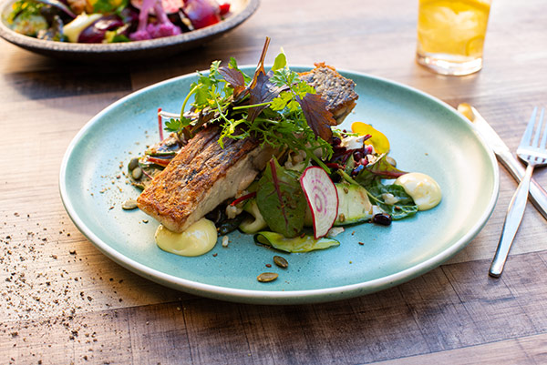 Salmon Fillet, The Shed, food and beverage and lifestyle photography